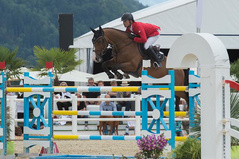 Tarioso Manciais sold to American rider Katherine Dinan