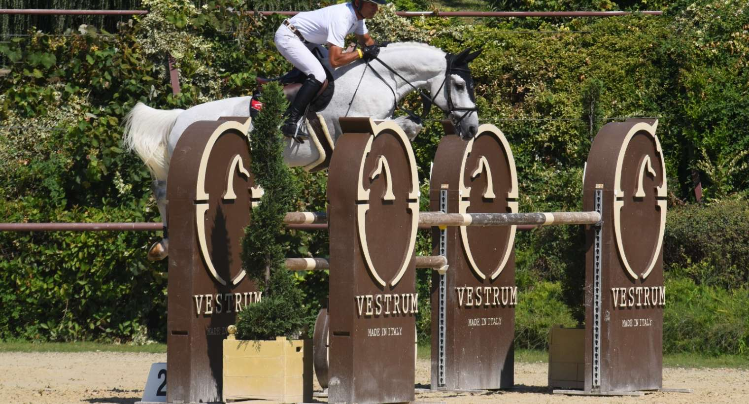 Throwback to CSI Valkenswaard and CSI San Giovanni