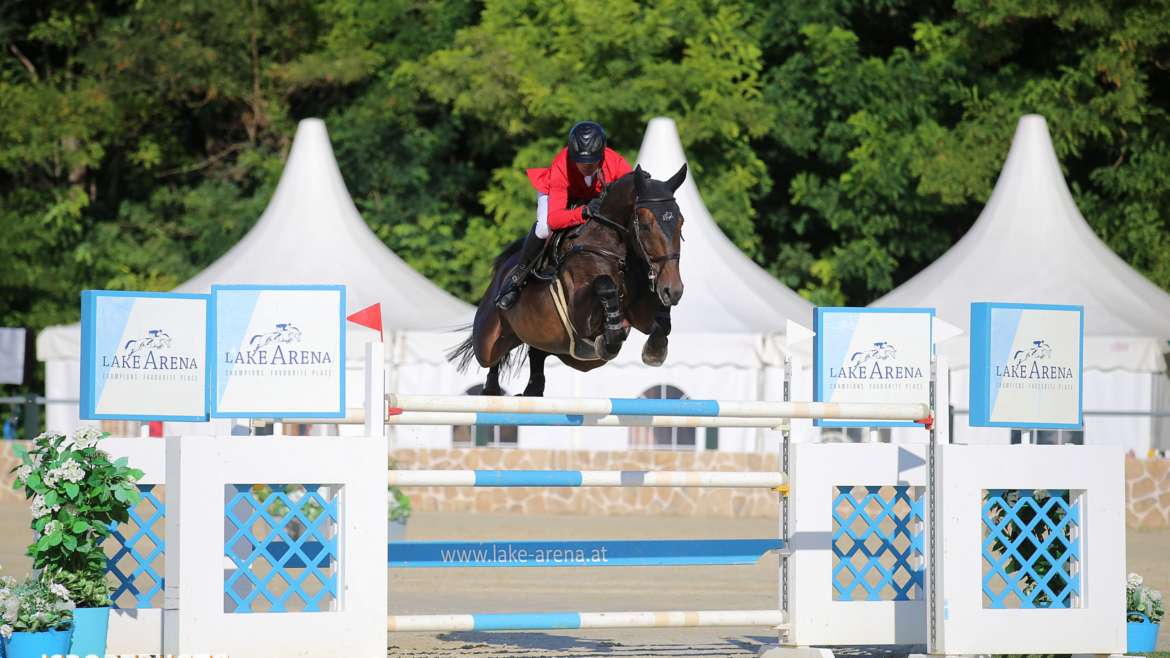 Good results for all horses in Wiener Neustadt